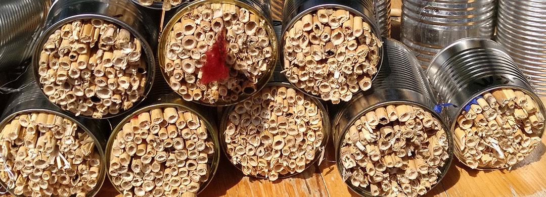 Bienenhotel makro