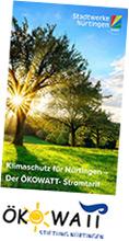 Oekowatt Flyer Vorschaubild vom DinLang